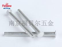 铝合金 5056材质半圆头空心铆钉半空心铆钉 品平头铆钉